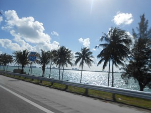 Sur la route de Miami Beach